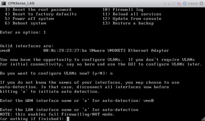 OPNSense Firewall